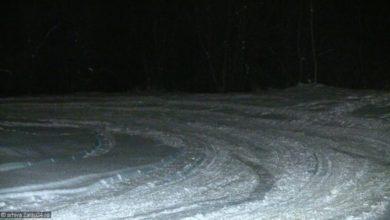 zapada drum iarna ninsoare